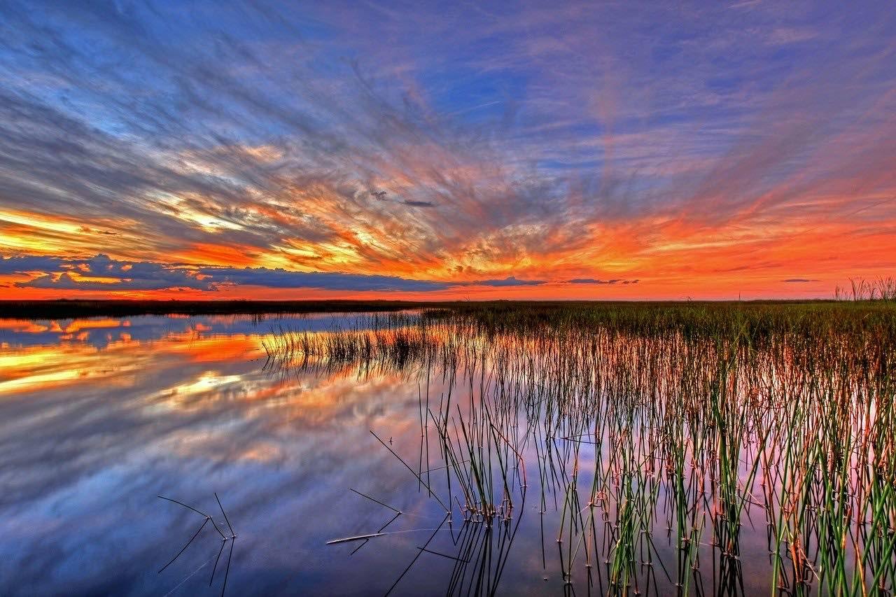 Parque Nacional de los Everglades en Florida, una maravilla al atardecer.
